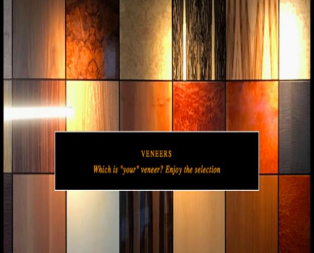 Veneer-Gri542-1.png