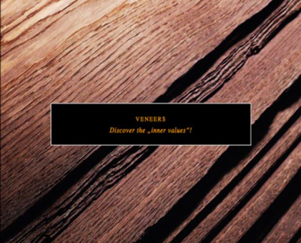 Veneer-Gri904-1.png