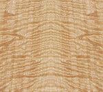 figured-eucalyptus20141114135655810.jpg